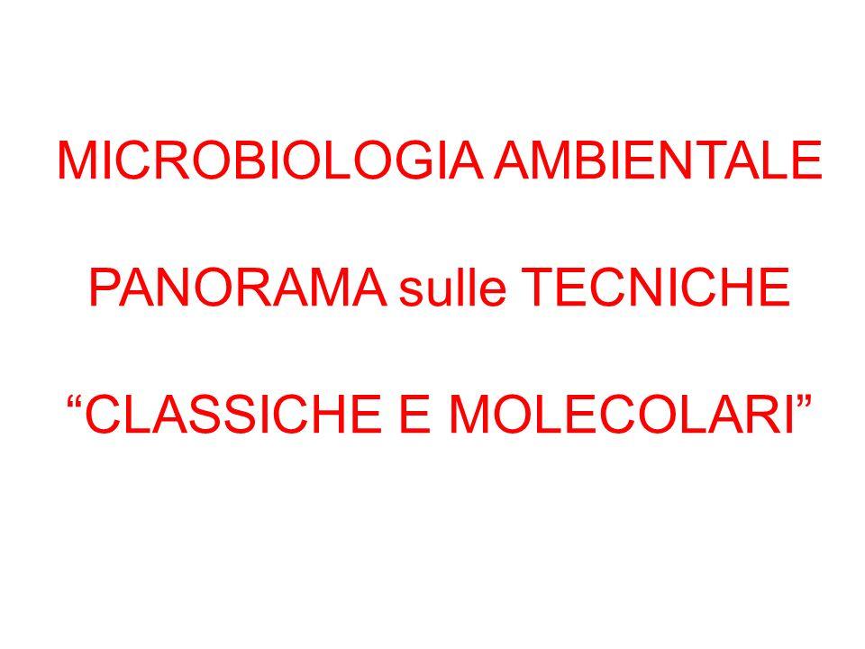 MICROBIOLOGIA AMBIENTALE PANORAMA sulle TECNICHE CLASSICHE E MOLECOLARI