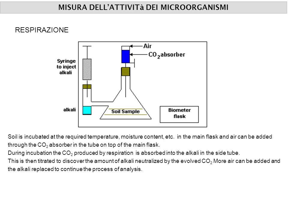 MISURA DELLATTIVITà DEI MICROORGANISMI RESPIRAZIONE Soil is incubated at the required temperature, moisture content, etc. in the main flask and air ca