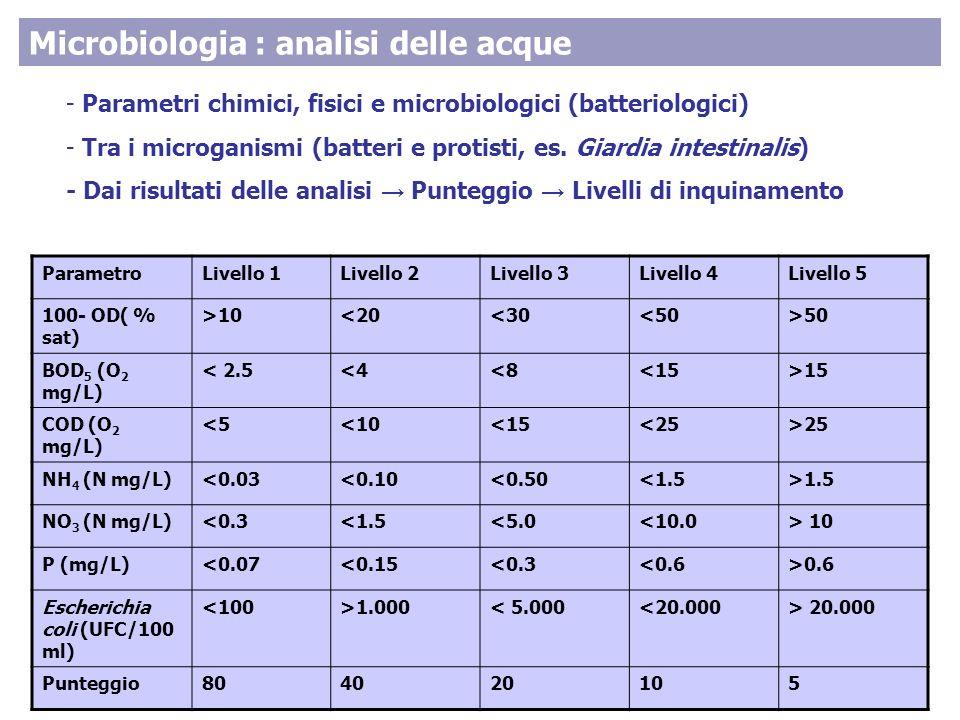 - Parametri chimici, fisici e microbiologici (batteriologici) - Tra i microganismi (batteri e protisti, es.