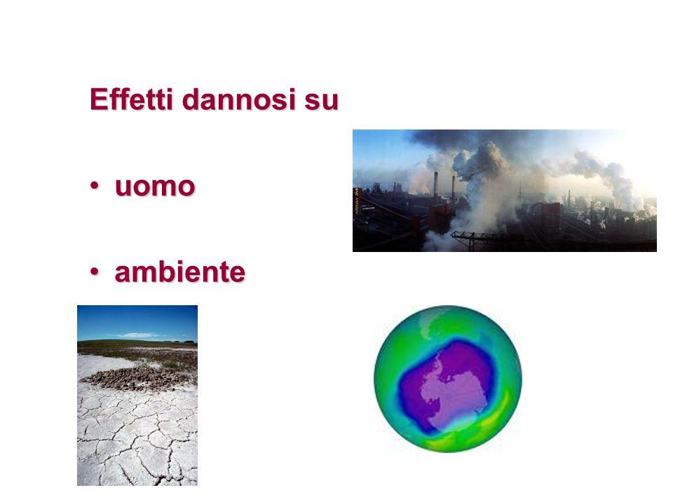 Effetti dannosi su uomouomo ambienteambiente