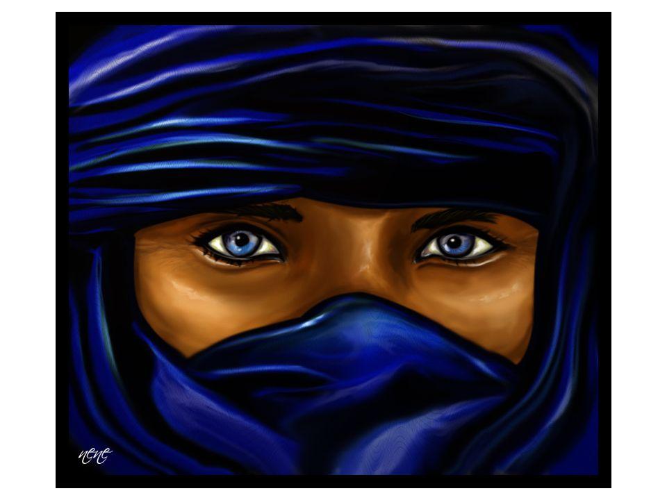 L indaco, nelle regioni del Sahel della Mauritania, è uno dei simboli di prestigio più ricercati.SahelMauritania La tunica dei Tuareg, ad esempio, è tutta indaco, colore considerato nobile.