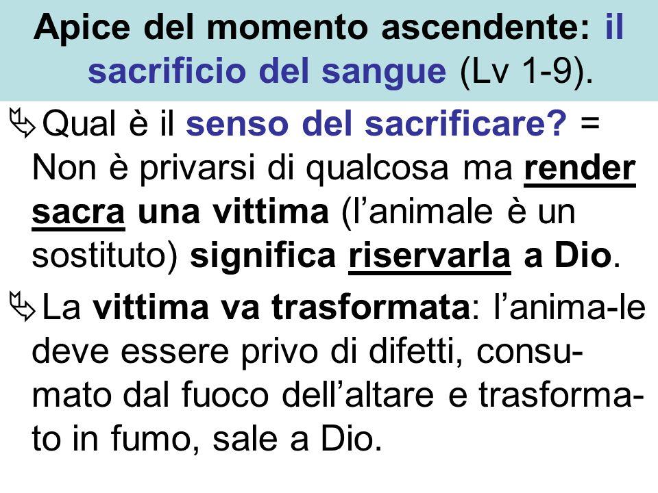 Apice del momento ascendente: il sacrificio del sangue (Lv 1-9). Qual è il senso del sacrificare? = Non è privarsi di qualcosa ma render sacra una vit