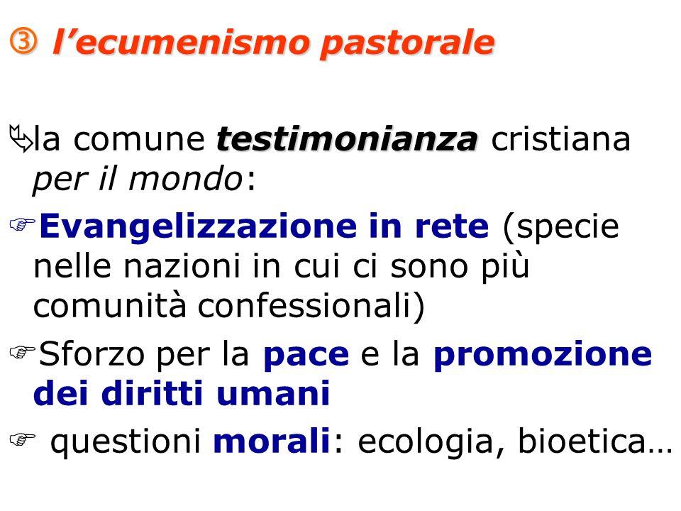 lecumenismo pastorale lecumenismo pastorale testimonianza la comune testimonianza cristiana per il mondo: Evangelizzazione in rete (specie nelle nazio