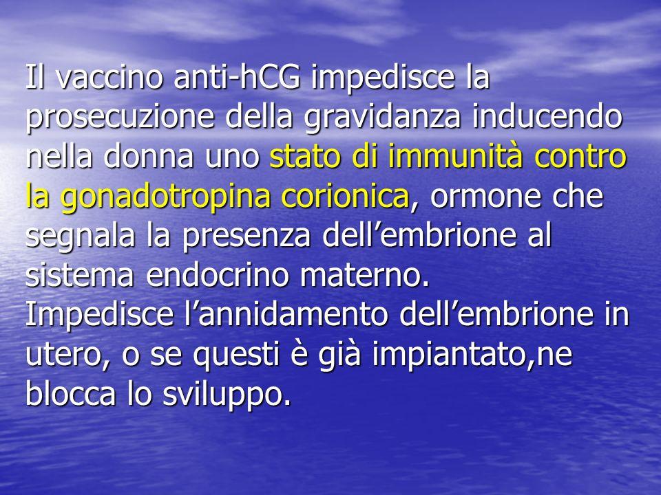 Il vaccino anti-hCG impedisce la prosecuzione della gravidanza inducendo nella donna uno stato di immunità contro la gonadotropina corionica, ormone che segnala la presenza dellembrione al sistema endocrino materno.