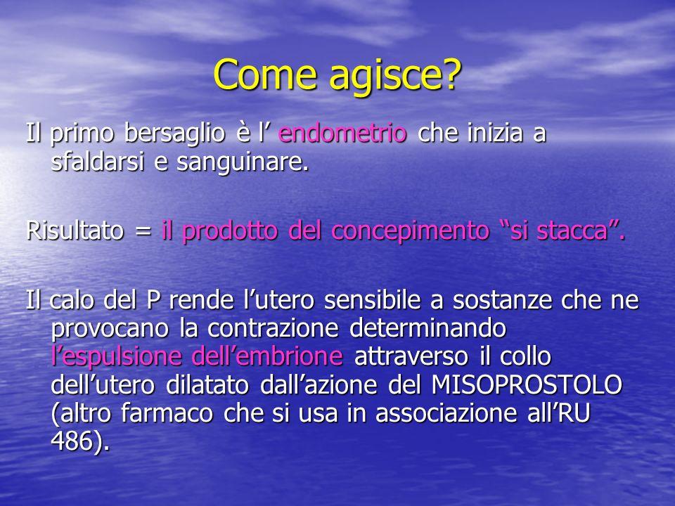 EMBRIONE A 7 SETTIMANE DI GESTAZIONE.