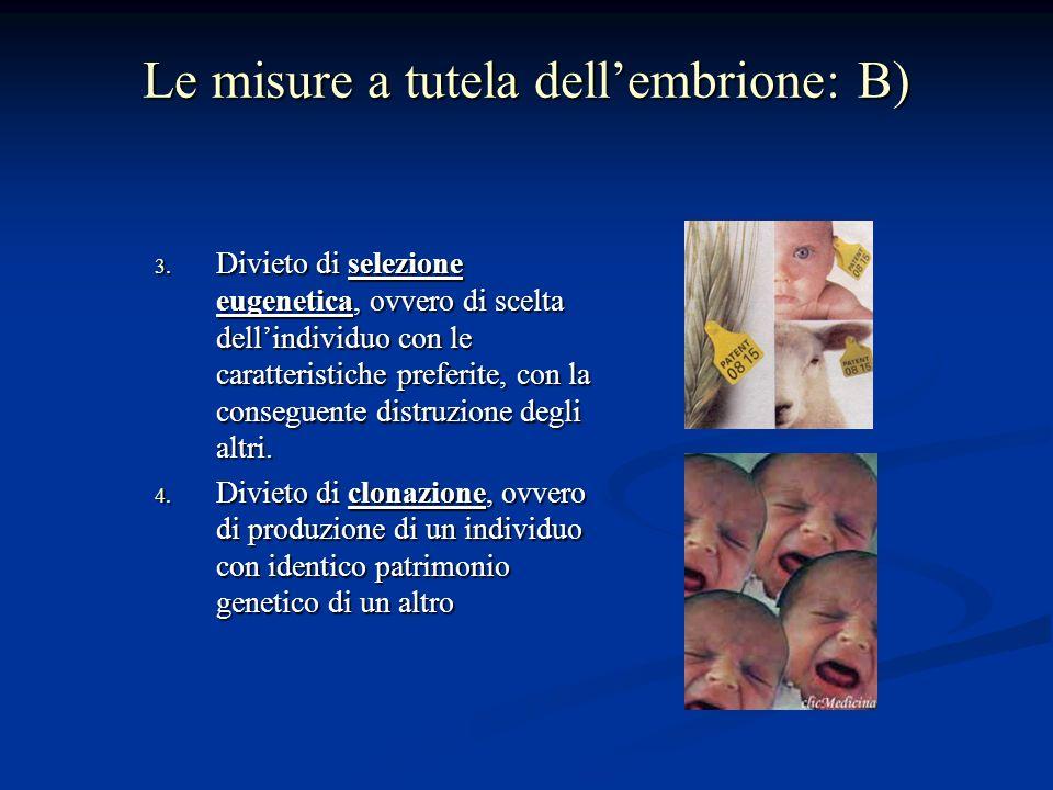 Le misure a tutela dellembrione: B) 3.