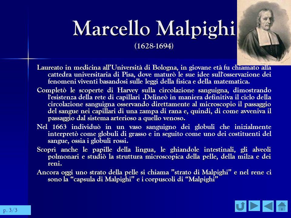 Marcello Malpighi (1628-1694) Laureato in medicina allUniversità di Bologna, in Laureato in medicina allUniversità di Bologna, in giovane età fu chiam