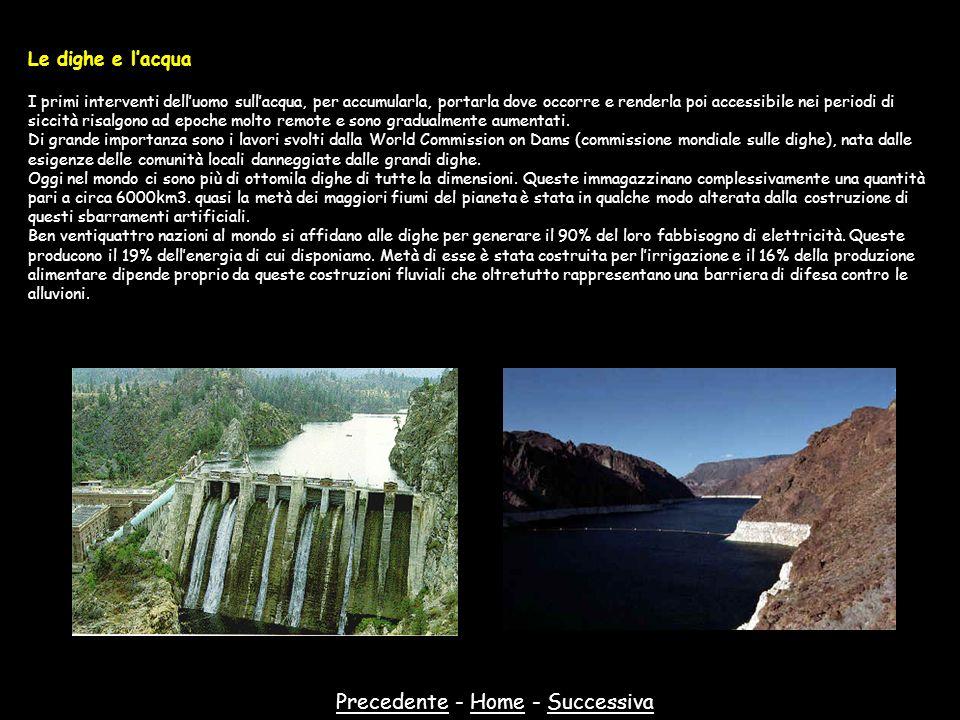 PrecedentePrecedente - Home - SuccessivaHomeSuccessiva Le dighe e lacqua I primi interventi delluomo sullacqua, per accumularla, portarla dove occorre