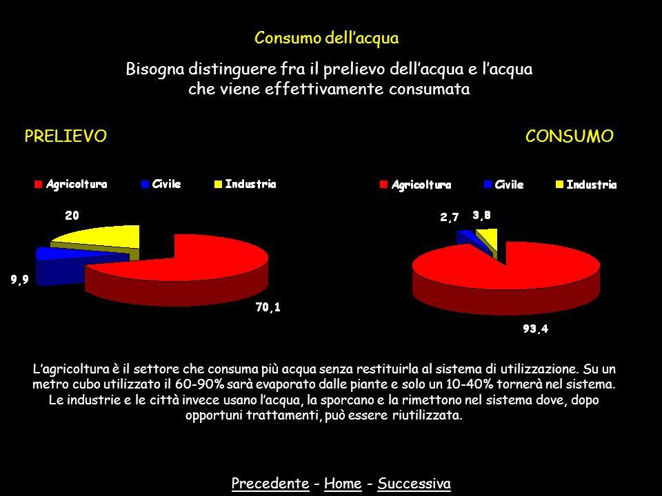 Consumo dellacqua Bisogna distinguere fra il prelievo dellacqua e lacqua che viene effettivamente consumata PRELIEVOCONSUMO PrecedentePrecedente - Hom