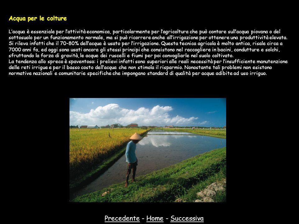 PrecedentePrecedente - Home - SuccessivaHomeSuccessiva Acqua per le colture Lacqua è essenziale per lattività economica, particolarmente per lagricolt