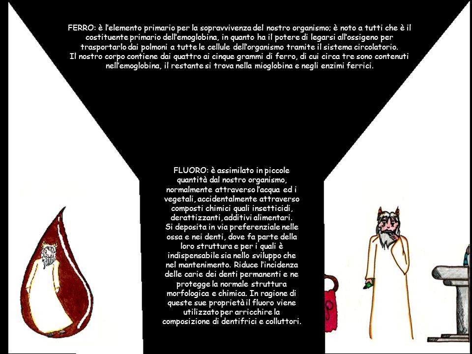 FERRO: è lelemento primario per la sopravvivenza del nostro organismo; è noto a tutti che è il costituente primario dellemoglobina, in quanto ha il po