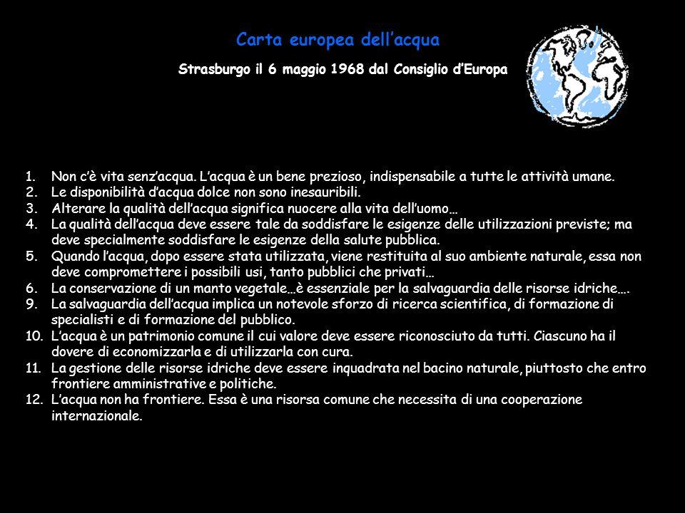 Carta europea dellacqua Strasburgo il 6 maggio 1968 dal Consiglio dEuropa 1.Non cè vita senzacqua. Lacqua è un bene prezioso, indispensabile a tutte l