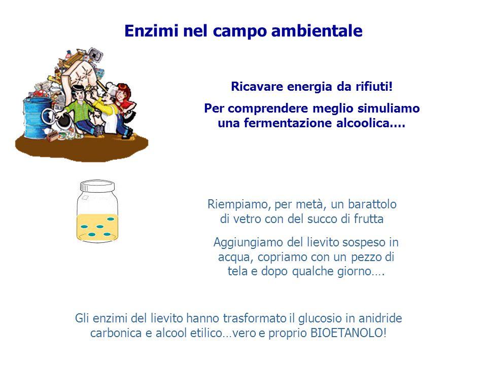 Enzimi nel campo ambientale Ricavare energia da rifiuti! Per comprendere meglio simuliamo una fermentazione alcoolica.... Riempiamo, per metà, un bara