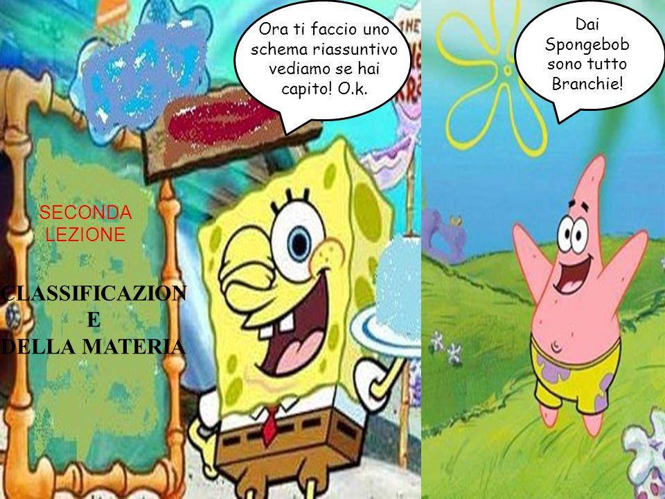 CLASSIFICAZION E DELLA MATERIA Ora ti faccio uno schema riassuntivo vediamo se hai capito! O.k. Dai Spongebob sono tutto Branchie! SECONDA LEZIONE