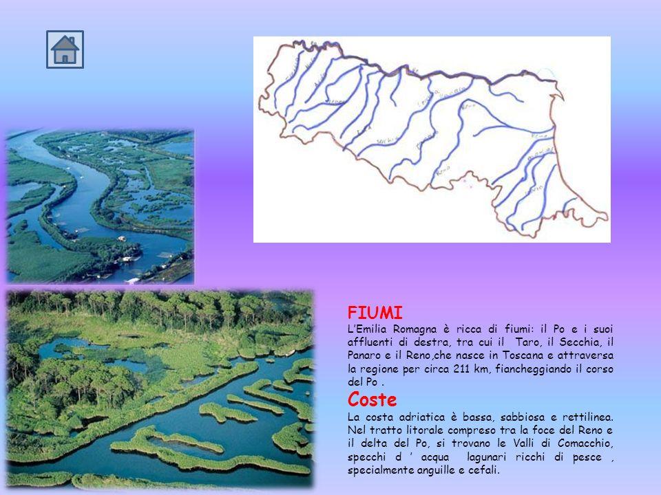 ASPETTO FISICO LEmilia Romagna è un territorio pianeggiante e si presenta come un grande triangolo delimitato ai lati dellAppennino Tosco-Emiliano dal