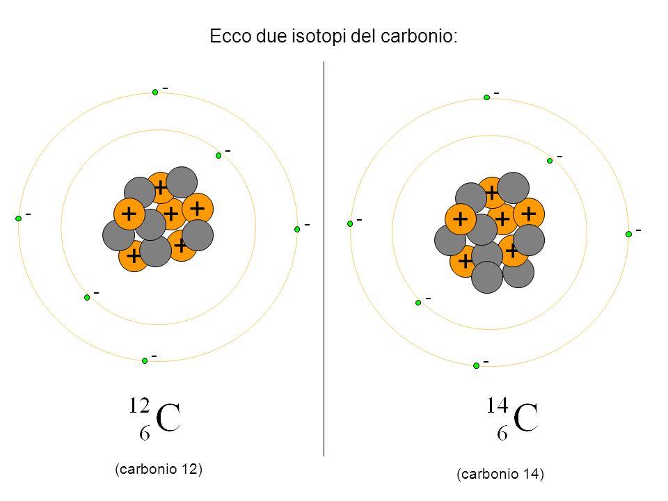 Ecco due isotopi del carbonio: + + + + + + - - - - - - + + + + + + - - - - - - (carbonio 12) (carbonio 14)
