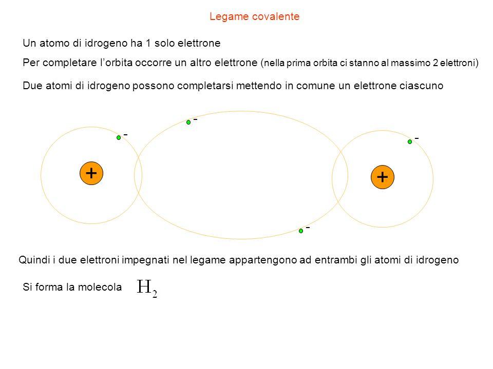 Legame covalente + - + - Un atomo di idrogeno ha 1 solo elettrone Per completare lorbita occorre un altro elettrone ( nella prima orbita ci stanno al