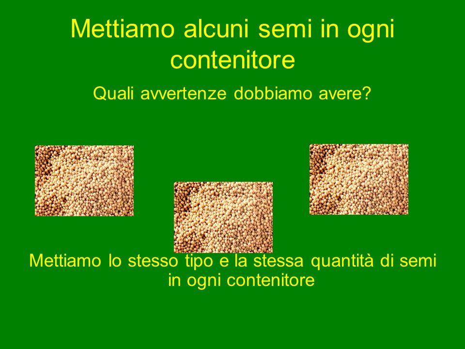 Mettiamo alcuni semi in ogni contenitore Quali avvertenze dobbiamo avere? Mettiamo lo stesso tipo e la stessa quantità di semi in ogni contenitore
