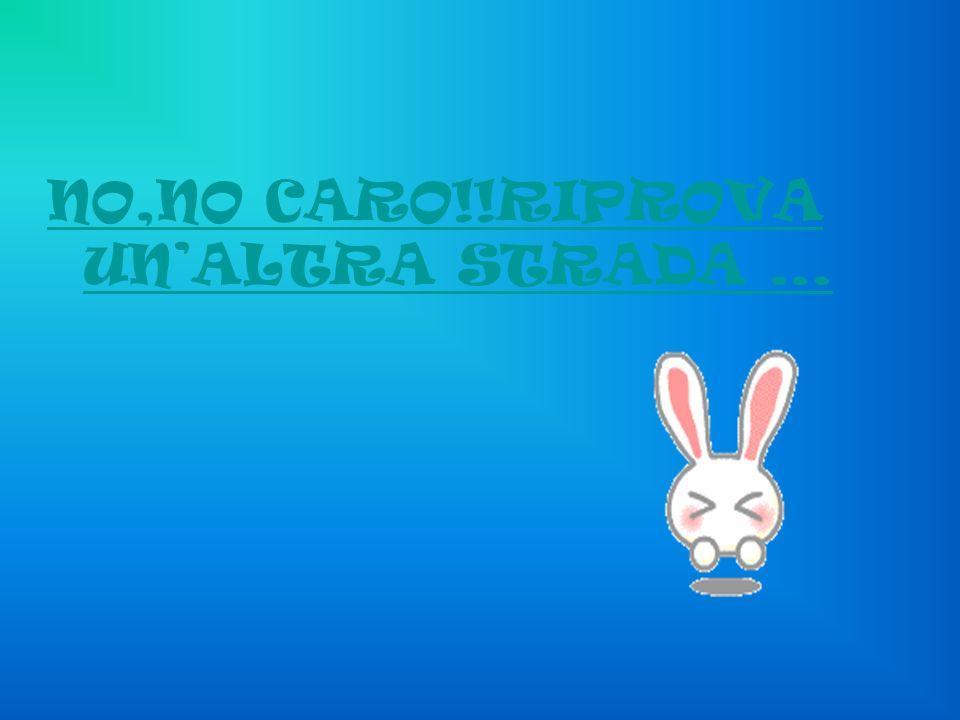 NO,NO CARO!!RIPROVA UNALTRA STRADA …