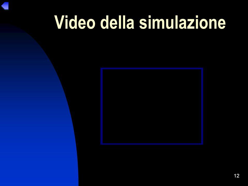 12 Video della simulazione
