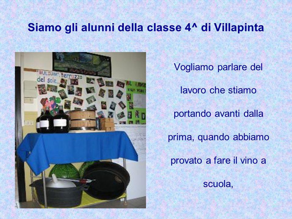 Siamo gli alunni della classe 4^ di Villapinta Vogliamo parlare del lavoro che stiamo portando avanti dalla prima, quando abbiamo provato a fare il vi