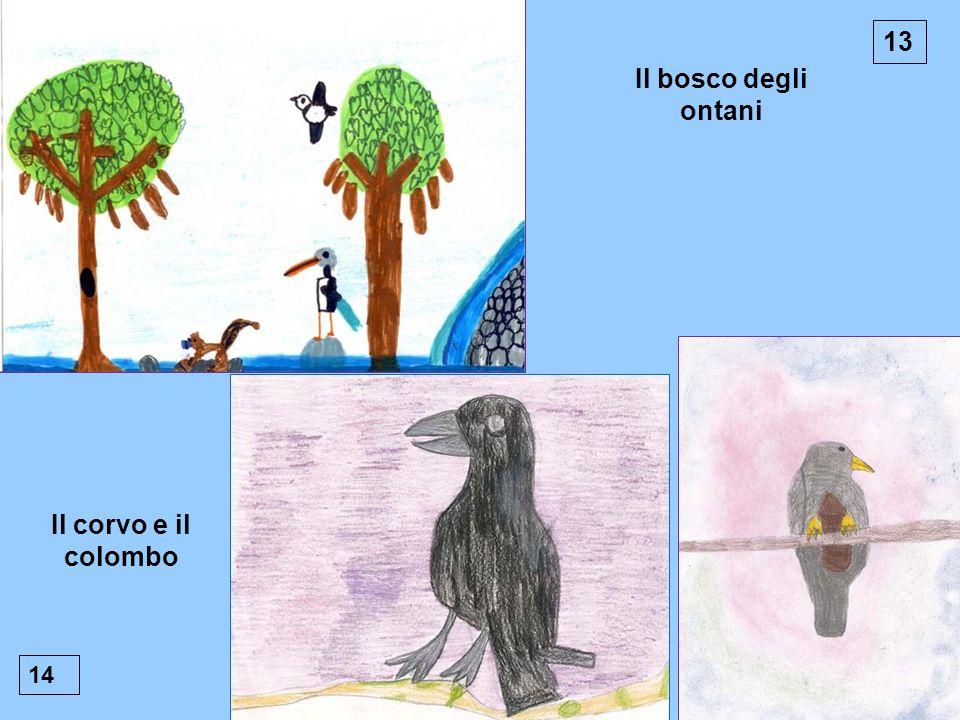 13 Il bosco degli ontani 14 Il corvo e il colombo