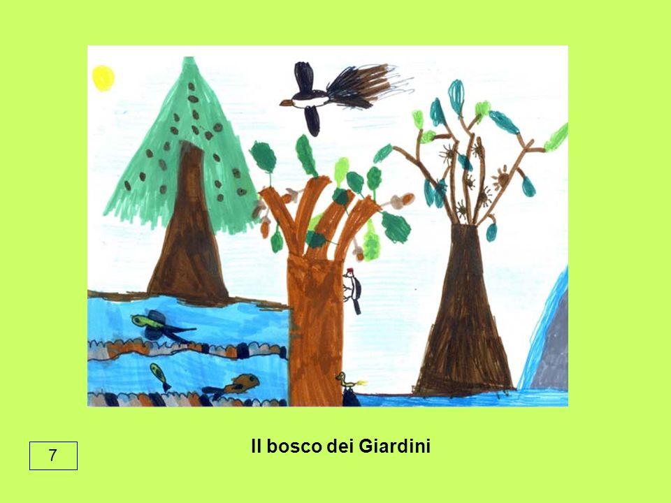 7 Il bosco dei Giardini