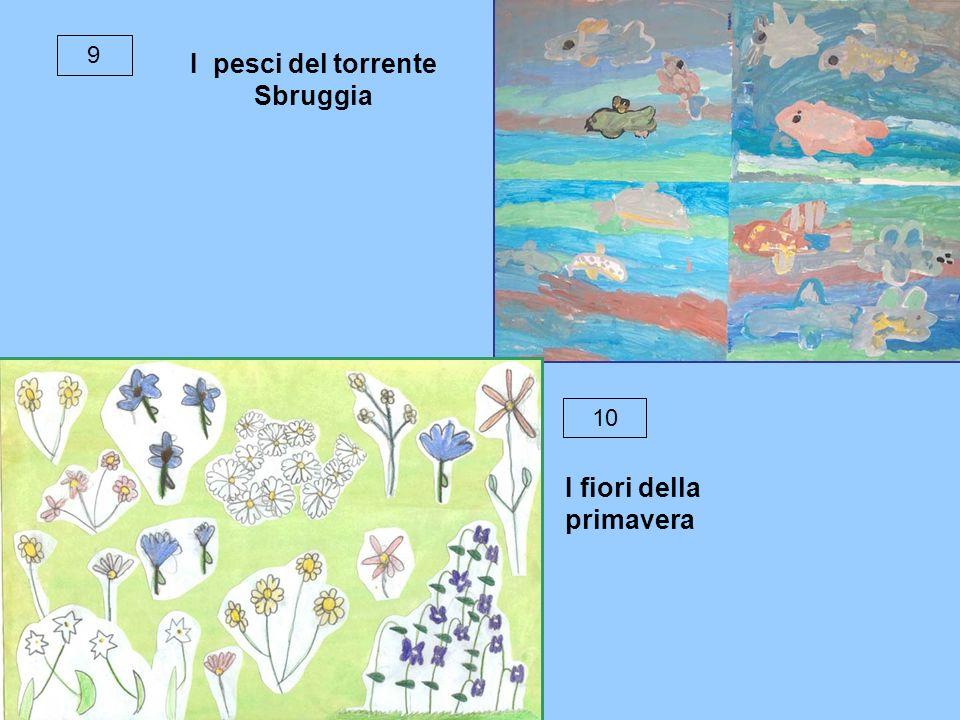 9 I pesci del torrente Sbruggia 10 I fiori della primavera