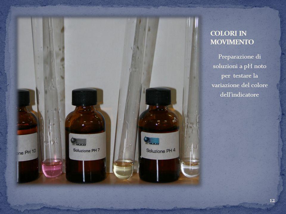 Preparazione di soluzioni a pH noto per testare la variazione del colore dellindicatore 12