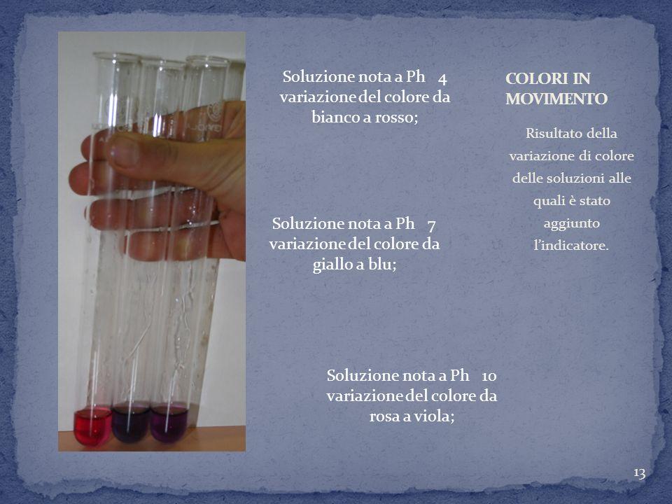 Risultato della variazione di colore delle soluzioni alle quali è stato aggiunto lindicatore. 13 Soluzione nota a Ph 4 variazione del colore da bianco