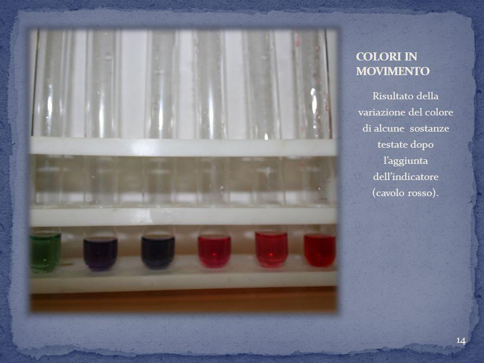 Risultato della variazione del colore di alcune sostanze testate dopo laggiunta dellindicatore (cavolo rosso). 14