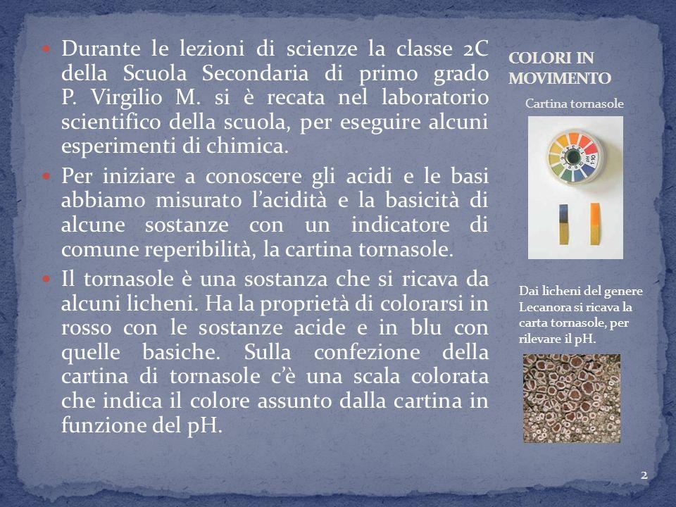 Durante le lezioni di scienze la classe 2C della Scuola Secondaria di primo grado P. Virgilio M. si è recata nel laboratorio scientifico della scuola,