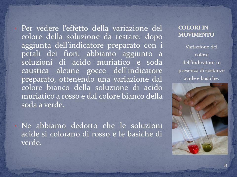 2-Il sugo del cavolo rosso.Materiale: Cavolo rosso.