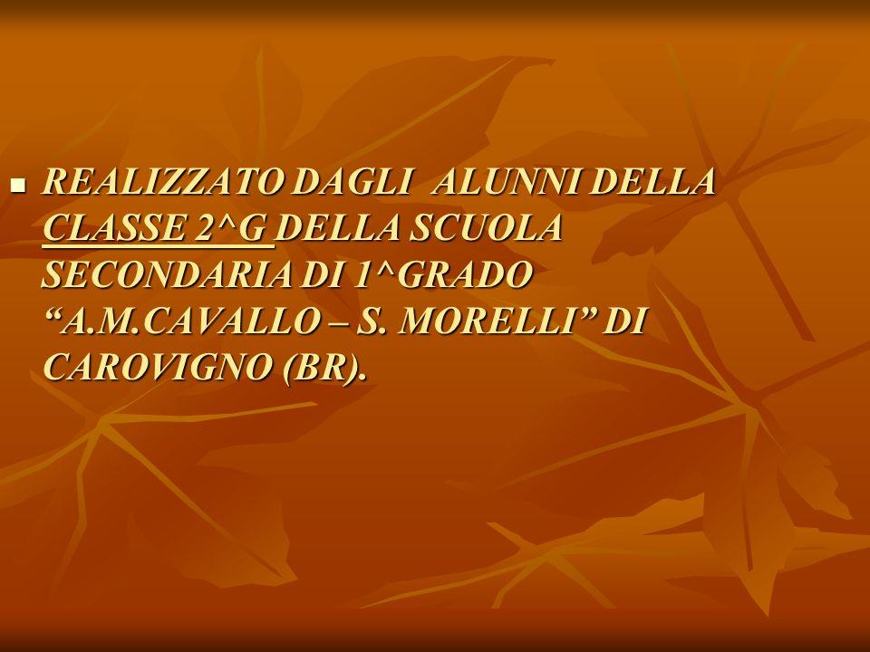 REALIZZATO DAGLI ALUNNI DELLA CLASSE 2^G DELLA SCUOLA SECONDARIA DI 1^GRADO A.M.CAVALLO – S. MORELLI DI CAROVIGNO (BR).