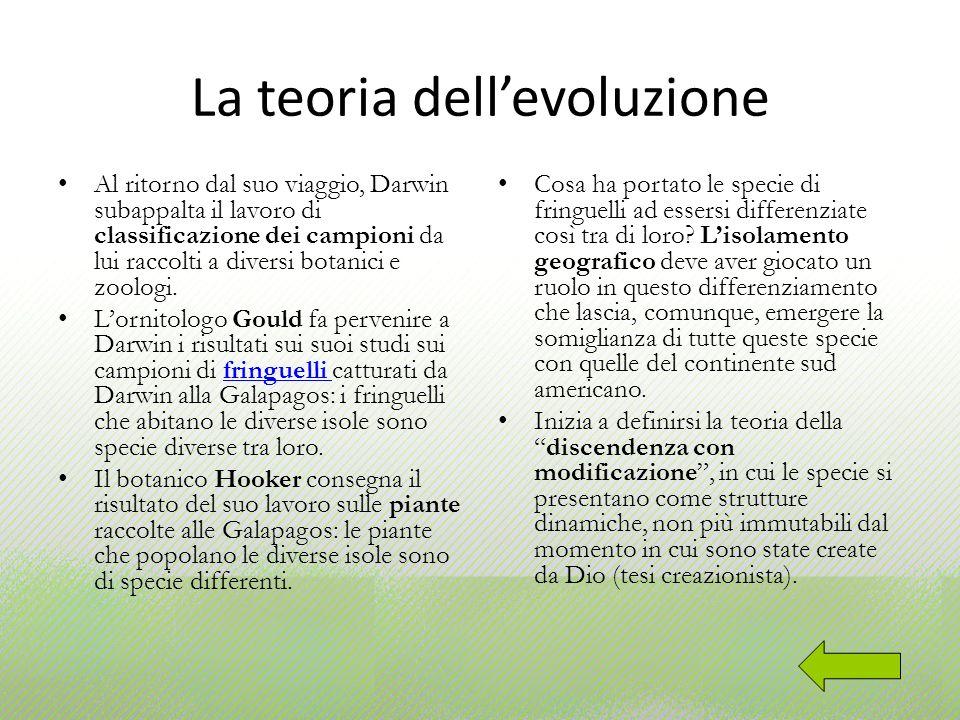 La teoria dellevoluzione Al ritorno dal suo viaggio, Darwin subappalta il lavoro di classificazione dei campioni da lui raccolti a diversi botanici e