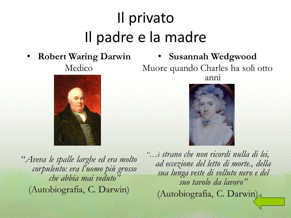 Il privato Il padre e la madre Robert Waring Darwin Medico Aveva le spalle larghe ed era molto corpulento: era luomo più grosso che abbia mai veduto (