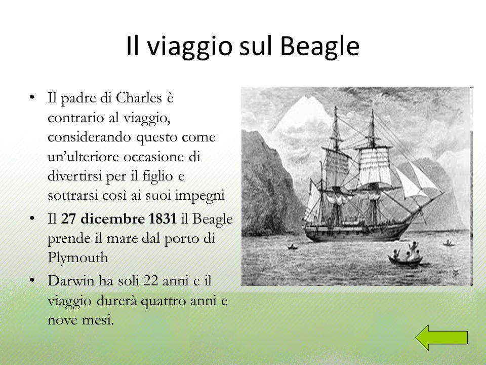 Il Beagle 27 metri di lunghezza e 7 metri e mezzo di larghezza al centro 2 cabine: in una dormono Darwin e il vicecartografo della spedizione, nellaltra il capitano FitzRoy Una biblioteca con 245 volumi Equipaggio di 64 persone, tra cui un missionario ventenne e tre indigeni della Terra del Fuoco