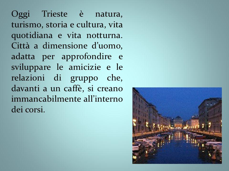 Oggi Trieste è natura, turismo, storia e cultura, vita quotidiana e vita notturna.