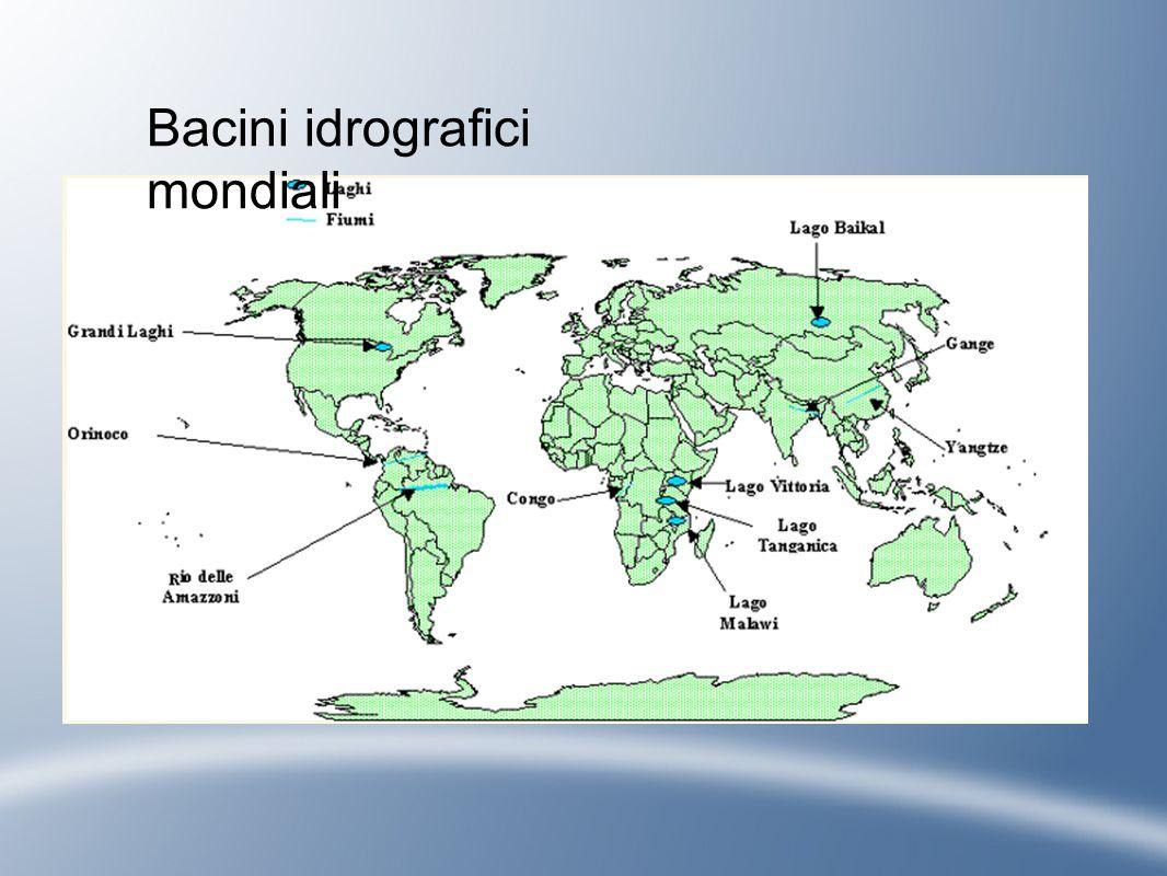 Bacini idrografici mondiali