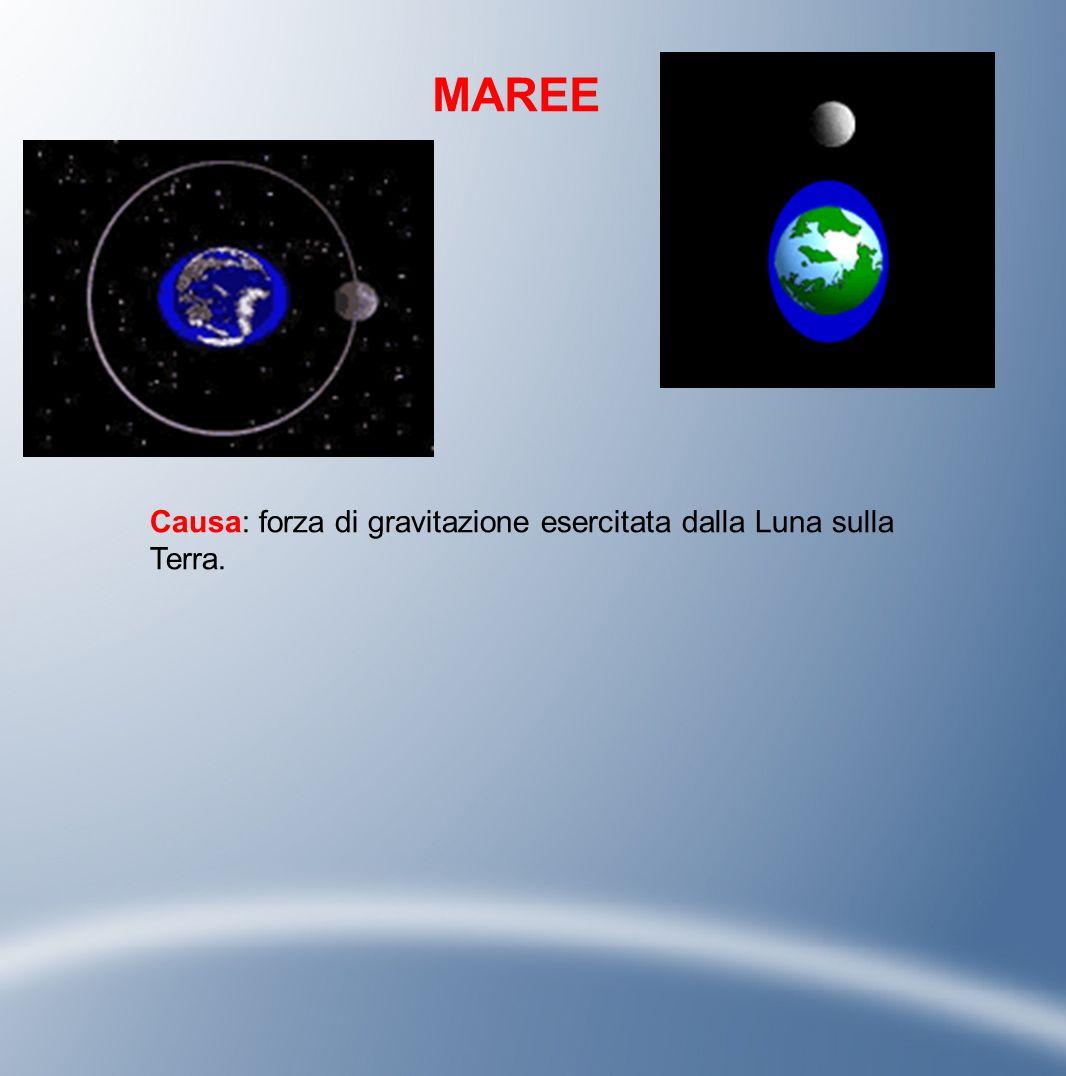 MAREE Causa: forza di gravitazione esercitata dalla Luna sulla Terra.