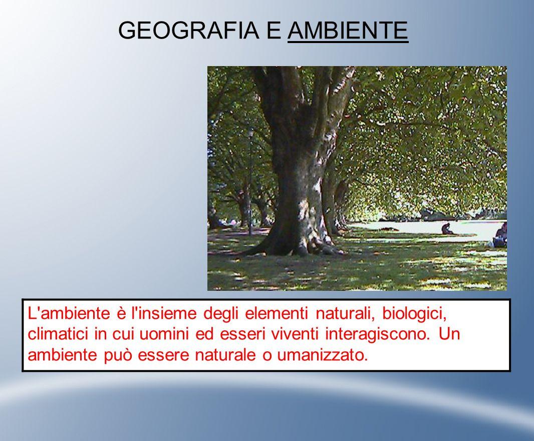 GEOGRAFIA E PAESAGGIO Il paesaggio è l aspetto che può assumere un determinato ambiente.