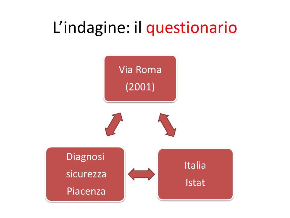Lindagine: il questionario Via Roma (2001) Italia Istat Diagnosi sicurezza Piacenza
