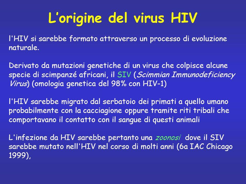 l'HIV si sarebbe formato attraverso un processo di evoluzione naturale. Derivato da mutazioni genetiche di un virus che colpisce alcune specie di scim