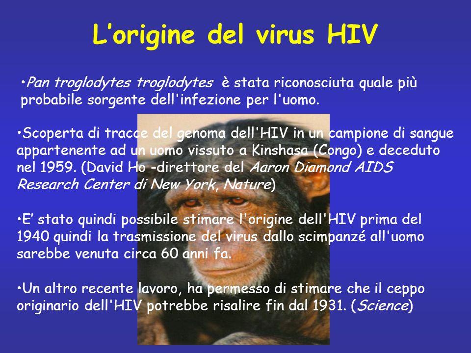 Scoperta di tracce del genoma dell'HIV in un campione di sangue appartenente ad un uomo vissuto a Kinshasa (Congo) e deceduto nel 1959. (David Ho -dir