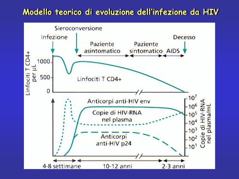 Modello teorico di evoluzione dellinfezione da HIV