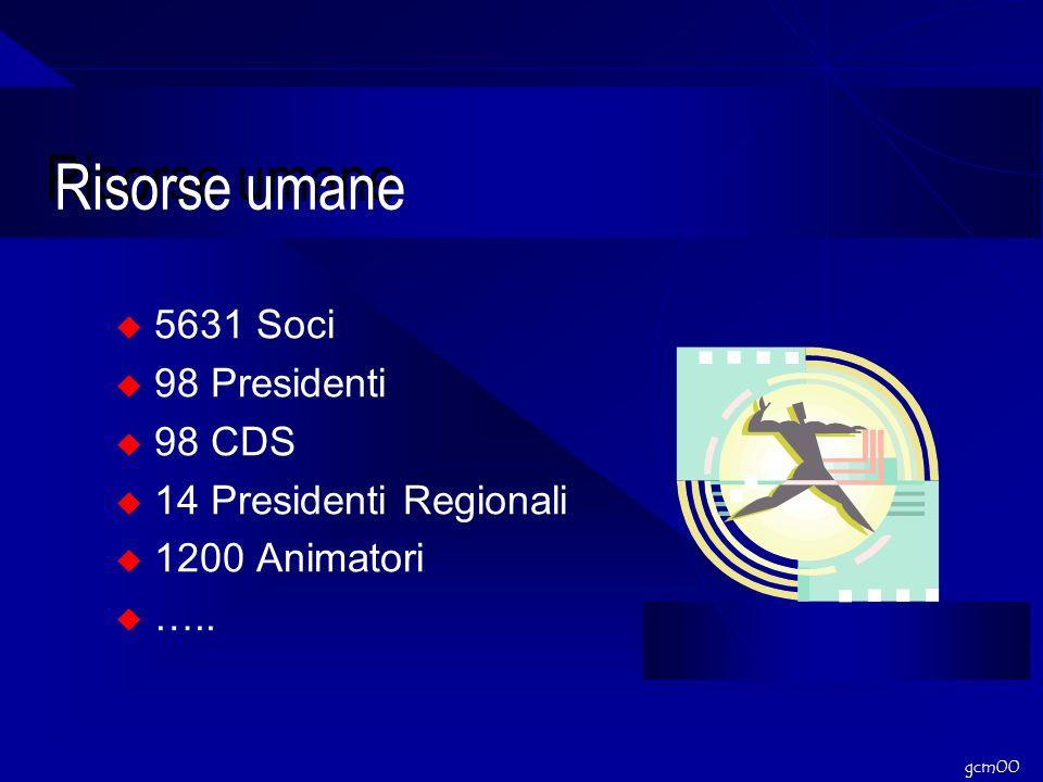 gcm00 Risorse umane 5631 Soci 98 Presidenti 98 CDS 14 Presidenti Regionali 1200 Animatori …..