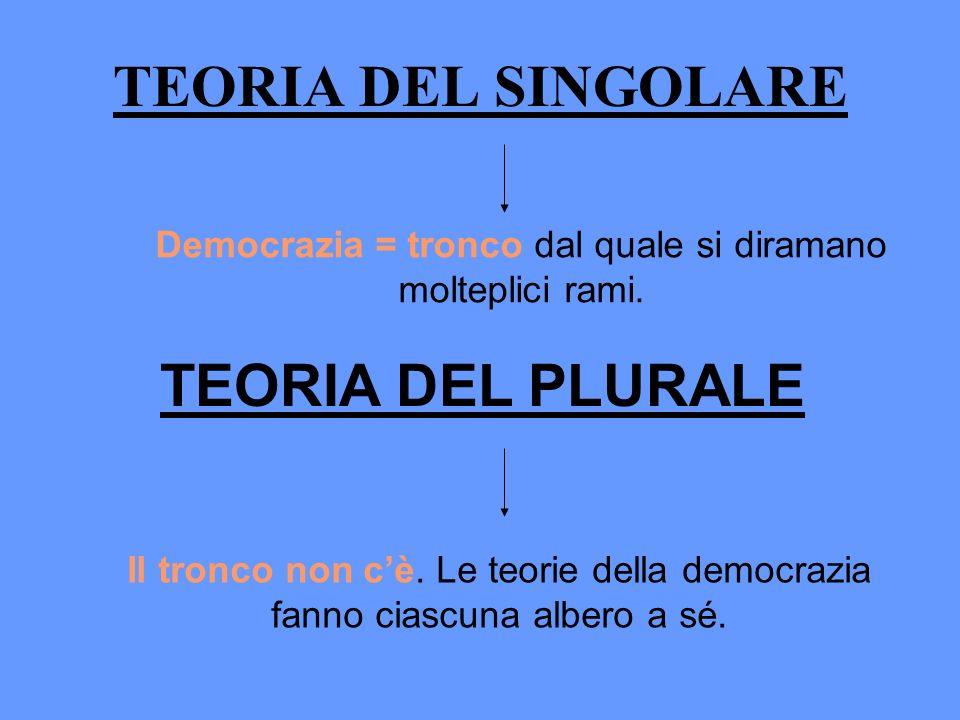 TEORIA DEL SINGOLARE Democrazia = tronco dal quale si diramano molteplici rami. TEORIA DEL PLURALE Il tronco non cè. Le teorie della democrazia fanno