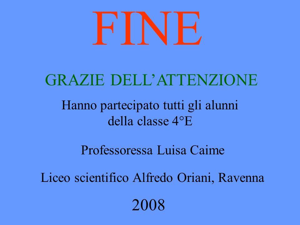 FINE Hanno partecipato tutti gli alunni della classe 4°E Professoressa Luisa Caime Liceo scientifico Alfredo Oriani, Ravenna 2008 GRAZIE DELLATTENZION