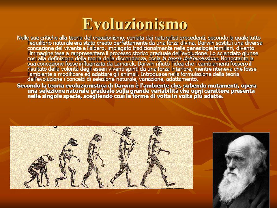 Evoluzionismo Nelle sue critiche alla teoria del creazionismo, coniata dai naturalisti precedenti, secondo la quale tutto l'equilibrio naturale era st