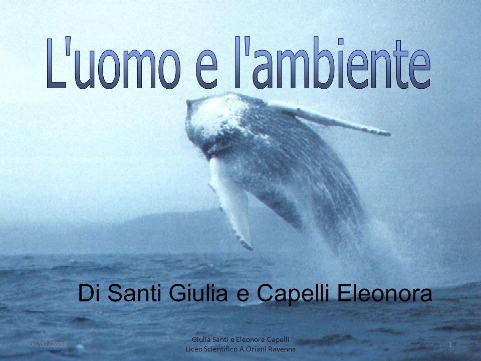 Di Santi Giulia e Capelli Eleonora 06/02/20141 Giulia Santi e Eleonora Capelli Liceo Scientifico A.Oriani Ravenna